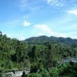 Hutan Hujan Tropis di Sumatra
