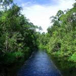 Taman Nasional Lorentz di Papua